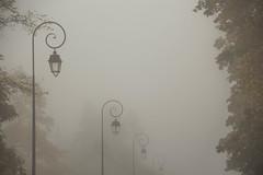 48/52 fro (Rosa Belarte) Tags: niebla fro invierno winter soledad farolas gris misterio
