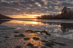 Maristow Reflections. (EXPLORED) (pedro2324) Tags: maristow reflections clouds seascape seashore river sunset devon landscapes
