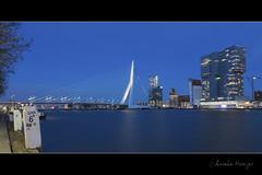 Erasmusbrug Rotterdam (aNNaj) Tags: rotterdam erasmusbrug brug avond stad city night blue blauwuurtje