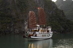 HQ4A4158 (gmacfadyen) Tags: vietnam halong bai tu long bay