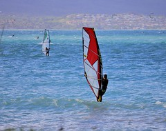 wind surfers (joybidge) Tags: trishcanada naturepatternscanada mauihawaii water