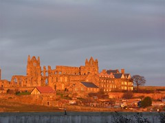 Warm glow of sunset over Whitby Abbey (Martellotower) Tags: whitby abbey warm glow sunset headland ruins