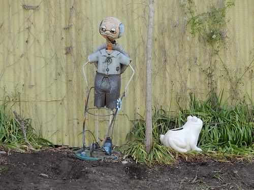 Tin Man and Frog