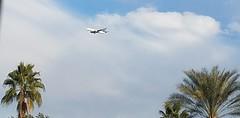 December 01, 2016 (5) (gaymay) Tags: california desert gay love riversidecounty coachellavalley airplane clouds palmtrees