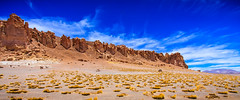 Chile 2013-2634 (sebtac) Tags: chile2013 chile 2013 outdoor reservanacionallosflamencos