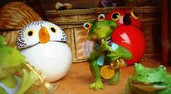 DSC03130 Shop window party (Rodolfo Frino) Tags: party music frog bird wood macromondays eye eyes ojo ojos depthoffield dof cute toy toyanimal toyanimals colorful colourful colorido colorida red green white shopwindow vidriera instrument glass reflection glassreflection mardelplata argentina