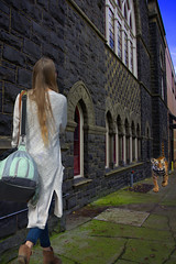 Tiger On The Loose (swong95765) Tags: building animal tiger bengal woman female lady walking sidewalk