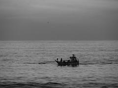 Volta... (ndreia) Tags: sonydschx200v portugal pvoadevarzim mar sea barcos boats 2016 pb bw