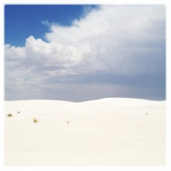 White Sands National Monument Gypsum Dunes New Mexico Landscape IMG_8688 (Dallas Photoworks