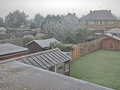 Frosted (Gary Kinsman) Tags: 2005 trees window garden bedroom garage buckinghamshire
