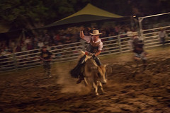 Katherine Rodeo (Serendigity) Tags: people cowboys rural evening town katherine australia rodeo outback bullriding northernterritory katherineshow