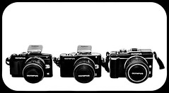 Olympus. EPL-5, EPL3, EPL1. Pen. (CWhatPhotos) Tags: epl1 epl3 epl5 together pen olympus penn elp1 1442mm kit esystem four thirds digital camera cwhatphotos mzuiko zuiko lens pictures picture photo photos image images foto fotos that have which contain taken monochrome olympuspen retro black white blackandwhite blackwhite photography monochromed micro 43 flickr