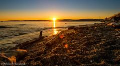 DSCF4899.jpg (oleksandrbarannyk) Tags: ocean sunset sky sun beach water landscape scenery rocks glow britishcolumbia warmth victoria vancouverisland rays goldencolours xpro1 lightingcomposition fujixpro1 xf14mm