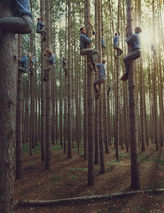 228/365 - Men In the Trees (loganzillmer) Tags: forest woods fineartphotography conceptualphotography conceptualimage