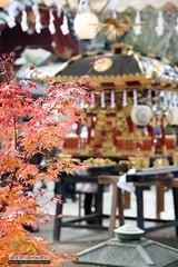 Chichibu Night Matsuri (davegolden) Tags: chichibu chichibunightmatsuri honshu japan koyo matsuri mikoshi saiitama jp chichibushrine chichibucity shinto shrine