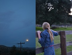 what are you looking for? (spitting venom) Tags: trees sky moon mountains nature girl night fence hair landscape evening twilight diptych horizon clothes powerlines jacket blond denim blondhair