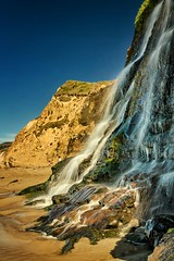Alamere Falls - Explored (PrevailingConditions) Tags: ocean california ca beach waterfall bayarea pointreyes alamerefalls flickrandroidapp:filter=none