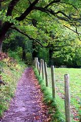 24-5.10.13 Keswick 103 (donald judge) Tags: autumn lake district derwentwater keswick