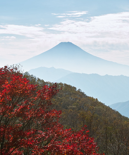 Red Leaves and Fuji-yama