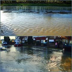 Whitton Dene becomes a dene again! (Afgil (please see profile)) Tags: flood middlesex whitton whittondene