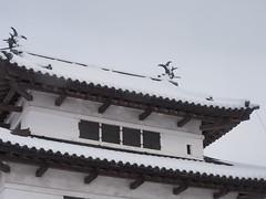 P1120637 (prelude2000) Tags: winter snow castle japan aomori hirosaki