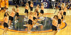 Gator Dazzlers (dbadair) Tags: basketball ut university florida tennessee volunteers gators sec uf odome vols 2014