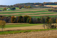 Yates Fields (rochpaul5) Tags: new york ny field barn corn nikon farm finger lakes grow upstate row hills layer layers hay d200 agriculture nikkor yates