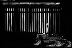 Abandoned Deer Shed (Nathan Branch) Tags: leica newzealand blackandwhite 35mm farm otago arrowtown farmbuilding deershed oldfarmshed leicam240