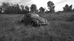 Bug in a Field (Forsaken Fotos) Tags: blackandwhite abandoned car vw crusty vwbug memorialday urbex forgottten lonelyrusty