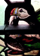 Puffins (davewebster14) Tags: bird church yorkshire stainedglass puffin stmichael bridlington bempton