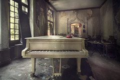 Great white (andre govia.) Tags: roses music white abandoned fire decay room piano grand down creepy urbanexploration romantic mansion manor derelict decayed decaying urbex decayedbuildings urbanexplorers urbexdecay andregovia
