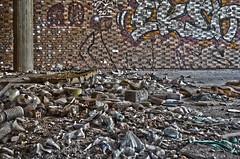 Garbage (iOLAos_) Tags: abandoned garbage debris dirt filth