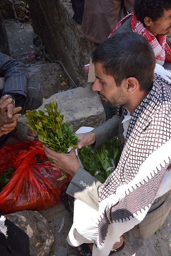 Checking the Qat, Yemen