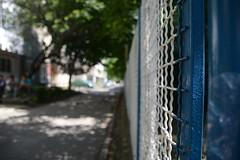 closeup (tinkphoto) Tags: school abstract macro high www romania plain onesti