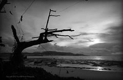 Teluk Air Tawar, Butterworth (Micartttt) Tags: bw silhouette malaysia penang butterworth micarttttworldphotographyawards micartttt telukairtawar