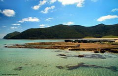 View to Malabar Hill & Old Settlement Beach From Lord Howe Island Wharf, NSW (Black Diamond Images) Tags: coral island paradise australia wharf nsw lordhoweisland worldheritagearea wharfprecinct thelastparadise oldsettlementbeach lordhoweislandwharf malabarhillr