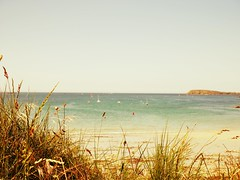 Clappers Roots (Edouardo The Bear) Tags: blue sea summer sun mer beach grass sex vintage 22 boat sable gimp bretagne bleu britanny holliday t bateau plage vacance barque herbe cotes bzh effet darmor lancieux