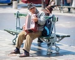 Accordion (dreamon85) Tags: street portrait paris photography notre dame 2014 accordionist