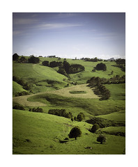 Green hills (jen 3163) Tags: gippsland hills hilly trees rural countryside farming green