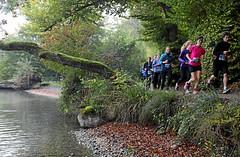Hallwilerseelauf: Idyllische neue Streckenfuehrung am 10 Kilometer-Lauf