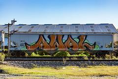 (o texano) Tags: houston texas graffiti trains freights bench benching awal