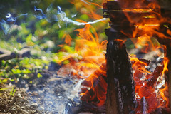 October symphony (petrapetruta) Tags: flames fire colorful sonya7