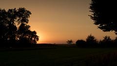 Sunset behind trees (Martijn Nijenhuis) Tags: trees zon zonsondergang oranje froombosch avond evening silhouete