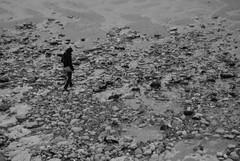 Treasure Hunt (Maro Grigorea) Tags: calais beach pebbles sand searching