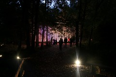 2016 - 14.10.16 Enchanted Forest - Pitlochry (45) (marie137) Tags: enchanted forest pitlochry mobrie137 scotland lights music people water reflection trees shows food fire drink pit patter shapes art abstract night sky tour family walk path bells smoke disco balls unusual whisperer bridge wood colour fun sculpture day amazing spectacular must see landscape faskally shimmer town