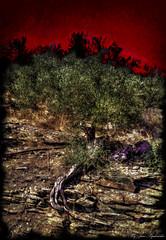 Life on mars (Ioannis Papadonikolakis) Tags: awardtree