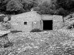 sheepfold 1 (jo.seppy) Tags: bergerie provence ventoux m645 mamyia macro 80mm rollei rpx400