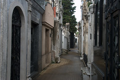 Avenue of the dead (VinayakH) Tags: tombs tomb recoletacemetery recoleta larecoletacemetery cemetery buenosaires graves argentina latinamerica southamerica mausoleum artnouveau artdeco neogothic baroque architecture