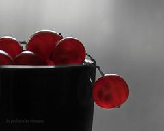 Les Groseilles  (Red currants) (la posie des images) Tags: macromondays backlit laposiedesimages redcurrents groseilles macro hmm partialdesaturation desaturationpartielle mercipierrepoursonaideavecletraitement