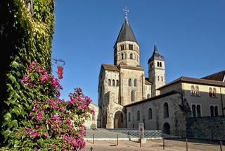 Des fleurs pour l'abbaye de Cluny